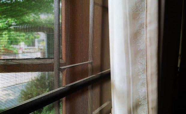 moskitiera na oknie